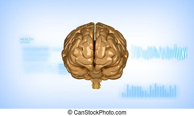 Human brain with EEG diagram with a