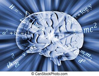 Human brain with math equations