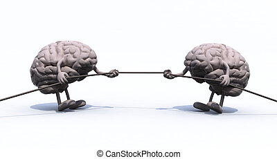 human brains and war rope - two human brains tug of war...