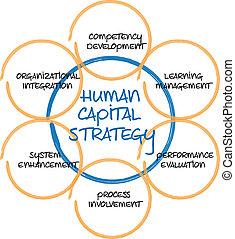 Human capital business diagram management strategy...