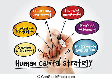 Human capital strategy mind map with marker, business...