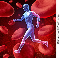 Human circulatory blood system - Human cardiovascular blood...