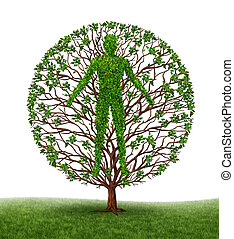 Human development and growth of personality and character in development as a medical icon of health as a tree with branches and green leaves in the shape of a persons anatomical body on white. s