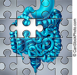 Human Digestion Puzzle
