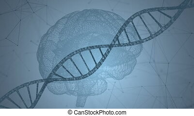 Human DNA, the brain. Abstract background with plexus. Loop animation
