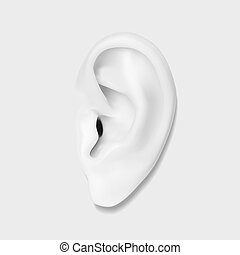 Human ear - Human monochrome ear photo-realistic...