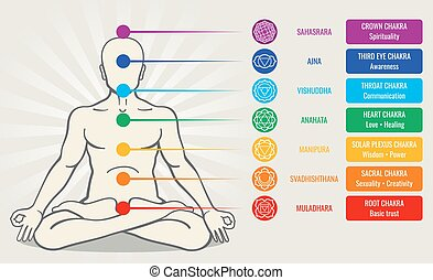 Human energy chakra system, ayurveda love asana vector illustration