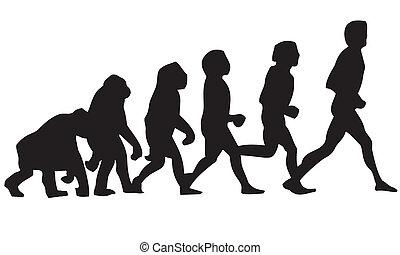 human evolution - Cro-Magnon, Lucy, Neanderthal, biped,...