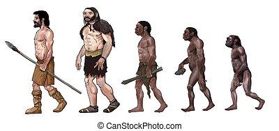Human evolution digital illustration, homo erectus, australopithecus