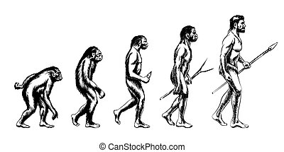 Human evolution illustration - Human evolution. Monkey and...