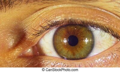Human Eye Blinks