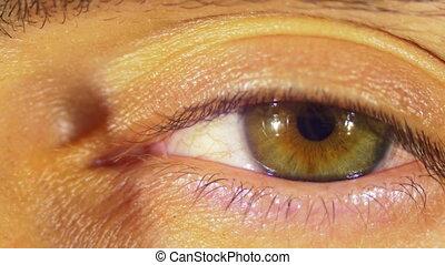 Human Eye Blinks. Close-up of man eye that blink, crazy...