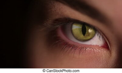 Human eye cat eyeball - A girl opens her eye, inside-a cat's...