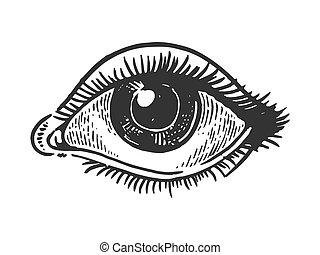 Human eye engraving vector illustration. Scratch board style...