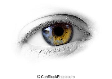 Human eye - hazel - An isolated image of a womans eye - in...