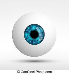 human eye isolated on white background