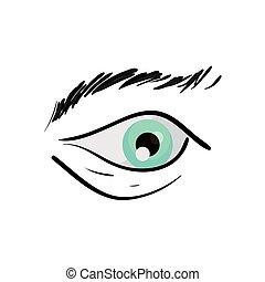 human eye on white background