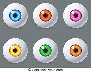 Human eyeballs. - Set of 6 human eyeballs with color iris.