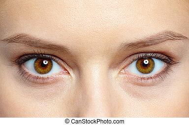 Human eyes - Macro image of human eyes