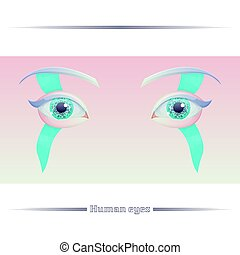 Human Eyes on a Colored Background