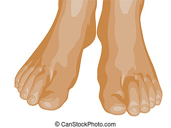 human feet isolated on a white background