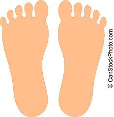 Human feet vector icon