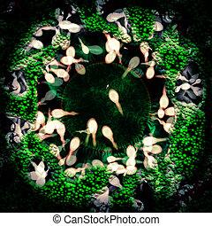 Human Fertalization - extreme macro illustration