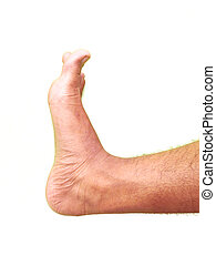 Human foot, Isolated on white background. Side view