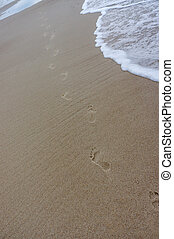 human footprints in the sand, walking on the beach