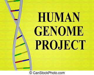 HUMAN GENOME PROJECT concept