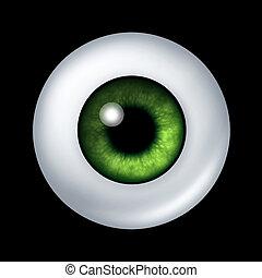 Human green eye ball organ with iris and retina lens...