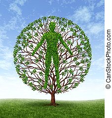 Human Growth - Human growth and development and personality ...