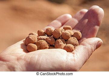 erosion pebbles