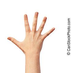 Human hand over white