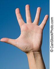 Human hand on a blue sky