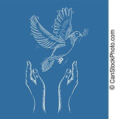 Human hands and peace dove illustration EPS10 file. - Sketch...