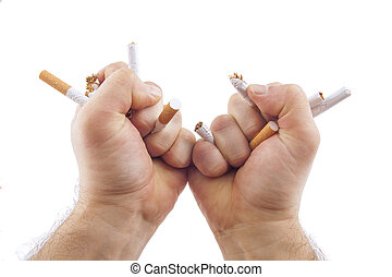Human hands breaking cigarettes Anti smoking concept