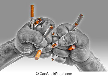 Human hands heatedly breaking cigarettes Anti smoking ...
