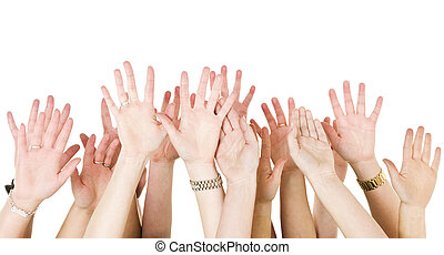 Human Hands Raised isolated on White Background