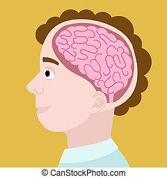 Human head in section cartoon vector illustration