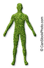 Human health and growth as a symbol of personal success in living a healthy life as an icon of health care medicine and medical issues represented as a patch of green grass turf in the shape of a body on white.