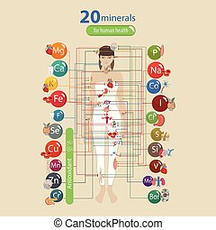 Human health and minerals. 20 minerals: microelements and...