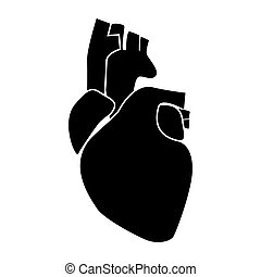 Human heart black color icon .