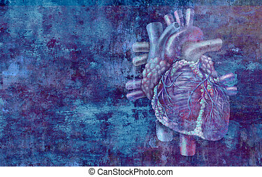 Human Heart Concept - Human heart concept anatomy on a ...