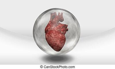 Human heart earth in glass sphere