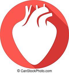 human heart flat icon