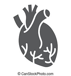 Human heart glyph icon, anatomy and biology, Cardiology sign, vector graphics, a linear pattern on a white background, eps 10.