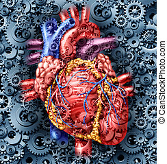 Human Heart Health - Human heart health medical care symbol...