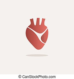 Human heart icon with shade on a white background