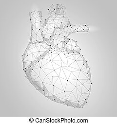 Human Heart Internal Organ Triangle Low Poly. Connected dots...
